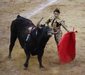 Los tres últimos toros de MIura no humillaron, embistieron con la cara alta.