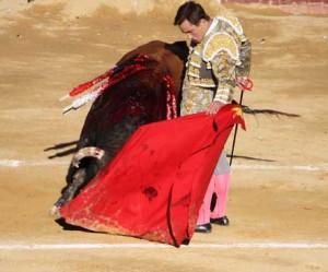 El primero, llamado Maestro, fue un muy buen toro de Fuente Ymbro.