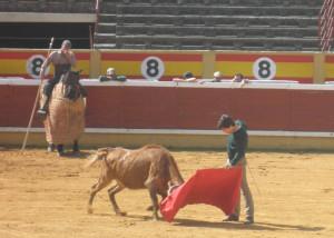 Natural del navarro Javier Marín a una de las vacas alfareñas.