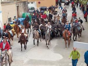 Treinta caballos acompañaron al ganado en Arguedas. Fotografía: R. Domínguez.