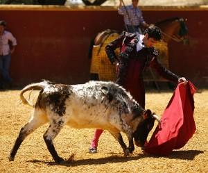 El novillero navarro ejecuta un natural con gusto en la plaza de tientas de Albarreal.