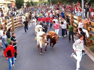 Imagen del primer encierro de las fiestas tudelanas del año pasado.