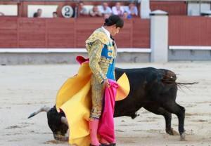 Quite de Javier Antón a su primer novillos en Las Ventas el día de su presentación.