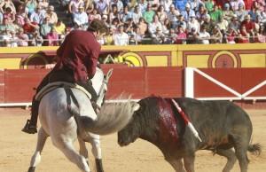 'Viriato' fue el caballo más destacado en su regreso a los ruedos europeos.