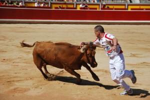 Cuatro ganaderías navarras competirán el 7 de julio en Pamplona.