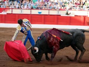 Buen derechazo del torero navarro a un toro de Victorino Martín.