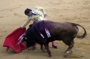 Derechazo de mano baja de Iván Frandiño al segundo de Toros de El Torero, al que le cortó las dos orejas.
