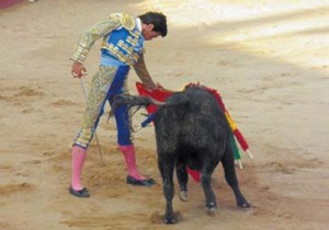 José Cabrera al natural ante uno de sus novillos. Fotografía: Isabel Virumbrales.