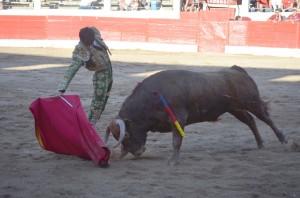 Derechazo de Henche a 'Tenor', el novillo de Santafé Martón premiado con la vuelta al ruedo.
