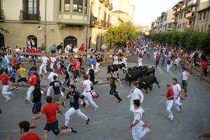 Los toros de Cebado Gago han galopado a gran velocidad por las calles de Tafalla. Fotografía: Ahora Zona Media.