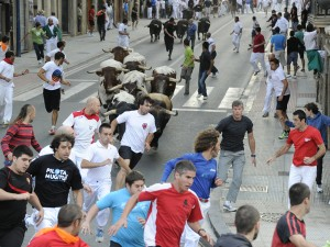 El toro castaño se ha adelantado enseguida a la manada. Fotografía: Ahora Zona Media.