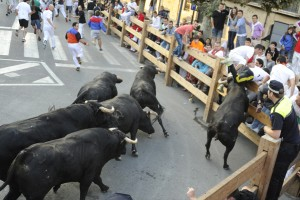Los toros de Rosa Rodrigues han firmado el encierro más peligroso. Fotografía: Ahora Zona Media.