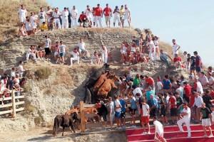 Por la tarde, las vacas intentaron subir hacia donde se encontraba el público. Fotografía: Blanca Aldanondo.