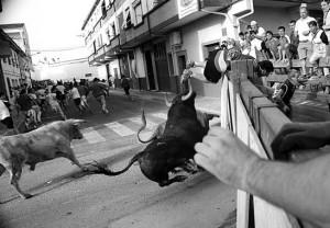 Momento en el que el joven de Azagra salta la barrera, amenazado por un utrero de Prieto de la Cal. Fotografía: Vaquero.
