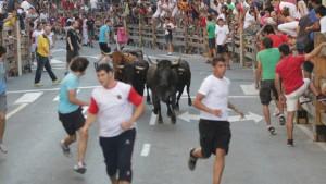 Una suelta de vacas de Macua de este año en Burlada.