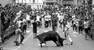 La suelta de vacas en Burlada es todo un éxito de participación y espectadores. Fotografía: Jesús Caso.