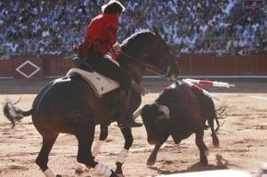Pirueta de '¨Disparate' en Salamanca, castaño que rubricó una gran actuación.