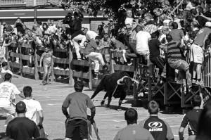 La primera salida del toro con soga por la Virgen de las Angustias levantó gran expectación. Fotografía: Montxo A. G.