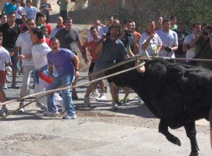 Una salida del toro con soga el año pasado.