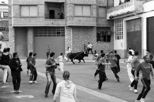 El último toro con soga, el segundo que salió a la calle, dejó buen sabor de boca en la afición. Fotografía: Juan Antonio Vaquero.