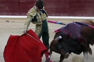 Derechazo del novillero navarro Javier Marín a un buen utrero de Hermoso de Mendoza.
