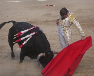 Natural de Sánchez Vara en Sangüesa hace dos años, en su última actuación en Navarra.