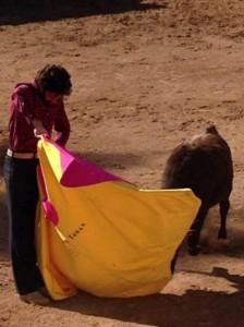 José Tomás tentando una vaca en la finca mexicana de Teófilo Gómez.