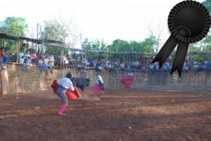 Típico festejo del estado mexicano de Yucatán, parecido al de percance fatal.