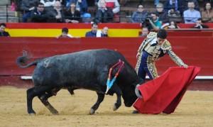 Natural de Castaño a un toro de Adolfo Martín en la plaza de Valencia.