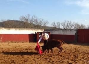 Derechazo de Francisco Marco a una de las vacas de Aldeanueva.