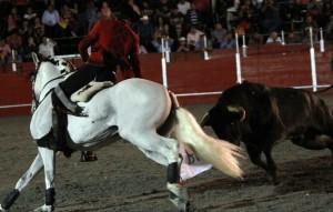Hermoso recibió en Ciudad del Carmen a uno de sus toros con 'Palomo'.