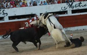 El toro intentó echarse a los lomos a 'Pirata'.