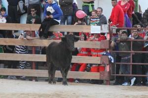 Un momento de la suelta de vacas de ayer en Villatuerta.