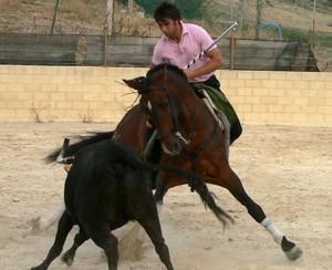 Roberto Armendáriz, entrenando en sus instlalaciones de Noain.