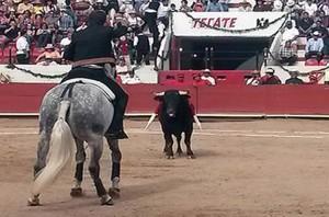 Hermoso citando a un toro en la plaza de Pachuca.