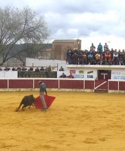 La plaza de toros de Mendavia durante un becerrada.