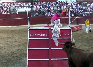 Una vaca de Arriazu, el año pasado en la plaza de Cascante.