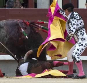 Manolo Rubio a merced del toro, ayer en Las Ventas. Fotografía: Javier Arroyo.