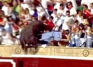 'Quesero' salta al tendido de la plaza de Tafalla.