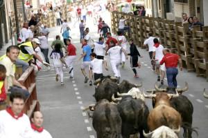 Los toros navarros de Santos Zapatería galopando por las calles de Tudela. Fotografía: Blanca Aldanondo.