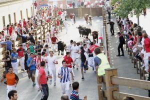El último encierro de Tudela lo han protagonizado toros de dos ganaderías. Fotografía: Blanca Aldanondo.