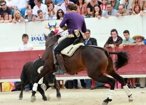 'Disparate' volvió a dictar otra lección de toreo a caballo. Fotografías: pablohermoso.net