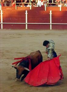 Natural de Jesús Martínez a 'Tomadilerro', el eral de Santafé Martón premiado como el más bravo de la Feria de San Adrián. Fotografía: Isabel Virumbrales.