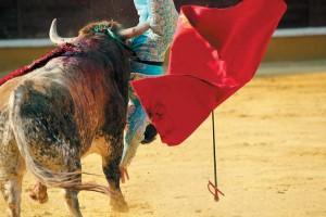 Momento en el que el salinero Sacacuartos hune uno de sus pitones en el muslo derecho de Soler. Fotografía: Blanca Aldanondo.