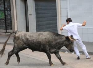 Un encierro en San Adrián. Fotografía: Vivilla.