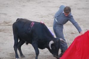 Alejandro Bonel al natural frente novillo que le cayó en suerte en Pastrana.