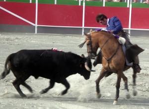 Armendáriz toreando muy de cerca con 'Polvovilla' el año pasado en Noain, su localidad natal.