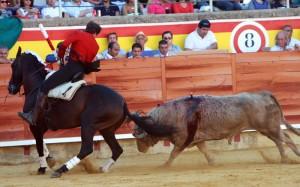 'Disparate' ha ofrecido esta tarde en Palencia otra lección de toreo de costado.