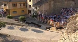 Un momento del encierro con vacas de Íñiguez.