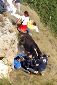 Momento en que Alberto Galdona es arrollado por la vaca 'Falcesina'. Fotografía: Garzaron.